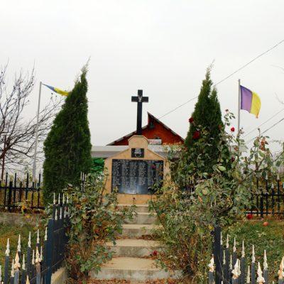 Vasile Surdu - Dangeni