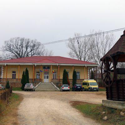 Mara Rauseanu - Stiubieni