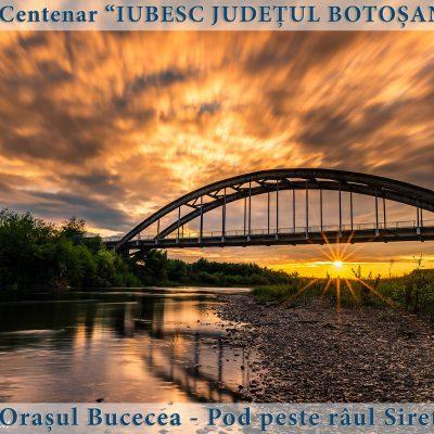 10 Bucecea - Pod peste raul Siret