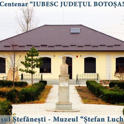 36 Stefanesti - muzeul Stefan Luchian