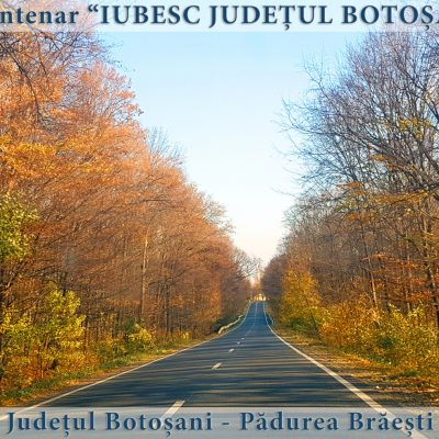 58 Judetul Botosani - padurea Braesti