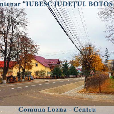 78 Lozna - centru