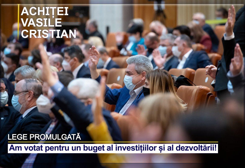 Bugetul investițiilor, bugetul dezvoltării